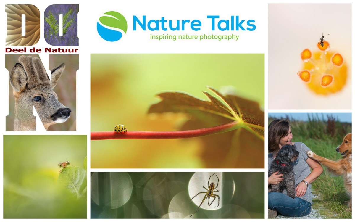 Nature Talks Photo Festival