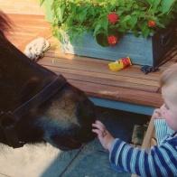 Fen en kleine Jonas