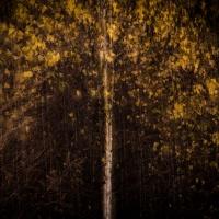 De toorn van de herfst